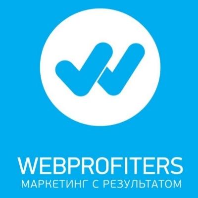 Исследование эффективности сайтов и рекламных кампаний интернет-магазинов от агентства Webprofiters